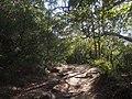 Maianbar - panoramio (1).jpg