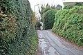 Maidenway Lane - geograph.org.uk - 1083881.jpg