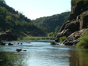 Makuleke - The walls of Lanner Gorge in the Makuleke are made of ancient sandstones. The Luvuvhu River has carved a deep canyon into these rocks.