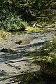 Mallnitz Seebachtal Naturlehrweg Quelle 02.jpg