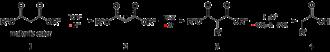Malonic ester synthesis - Malonic ester synthesis