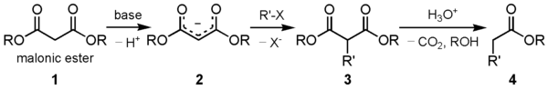 Malonic ester synthesis.png
