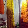 Marigold at lingaraj temple.jpg