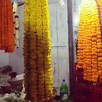 hanging garlands made of Marigold offered to the central deity