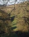 Meadow along Cotswold scarp, Horton - geograph.org.uk - 1658739.jpg
