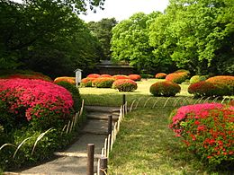 Meiji Shrine Inner Garden.JPG