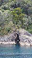Milford Sound, South Island (483081) (9482476755).jpg