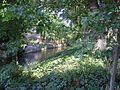 Mill Creek, Visalia, California.jpg