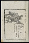 Ming herbal (painting); Ciliate desert grass Wellcome L0039424.jpg