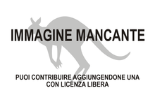 Immagine di Pseudocheirus occidentalis mancante