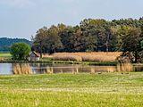 Mohrhof Weihergebiet 17RM0278.jpg