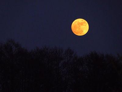 Monduntergang 2011-04-17 002.JPG