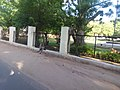 Monkeys near Baroda Museum.jpg