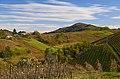 Monte del Ronco - panoramio.jpg