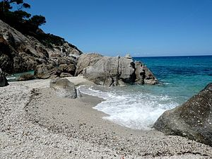Montecristo - The beach of Cala Maestra