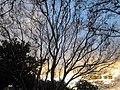 Monterey Park, CA, USA - panoramio (202).jpg