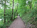Mosel valley - panoramio.jpg