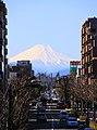 Mt Fuji from Higashikurume St01.JPG