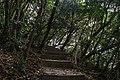 Mu Ko Lanta National Park, jungle hiking trail, April, 2018-2.jpg