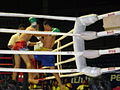 Muay Thai match at Rajadamnern Stadium 2007-05-20 17.JPG