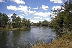Murrumbidgee River - Murrumbidgee River at Wagga Wagga