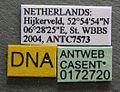 Myrmica lobicornis casent0172720 label 1.jpg