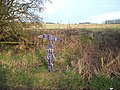 NCN Millennium Milepost MP1114 Burniston.jpeg