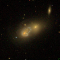 NGC1141 NGC1142 - SDSS DR14.png