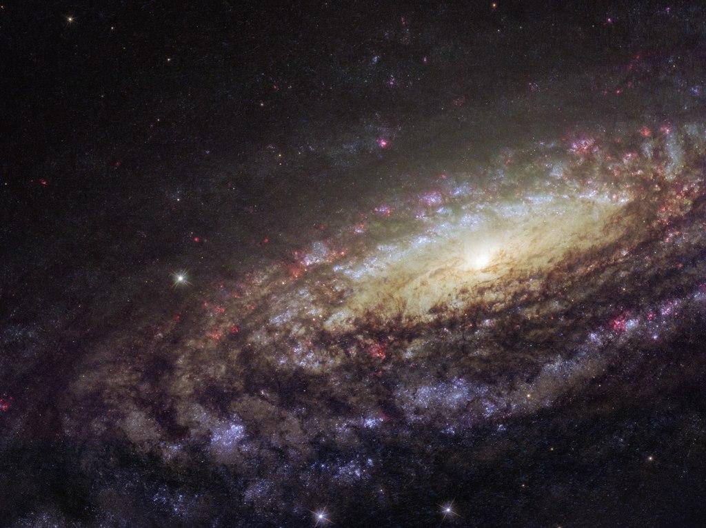 NGC 7331 (HST)