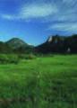 NRCSCO01012 - Colorado (1415)(NRCS Photo Gallery).jpg