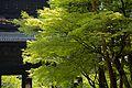 Nanzen-ji 南禪寺 (KYOTO-JAPAN) (4950808145).jpg