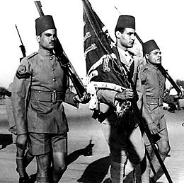 Nasser carrying the battalion flag - 10009.jpg