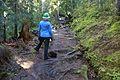 National Public Lands Day 2014 at Mount Rainier National Park (038), Narada.jpg