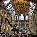 Natural history museum - panoramio.jpg