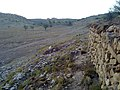 Navidhand Valley, Khyber Pakhtunkhwa , Pakistan - panoramio (40).jpg