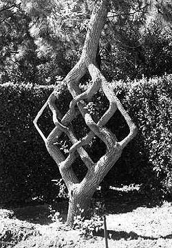 Example of Arborsculpture