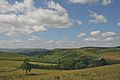 Near Hathersage, Peak District 3.jpg