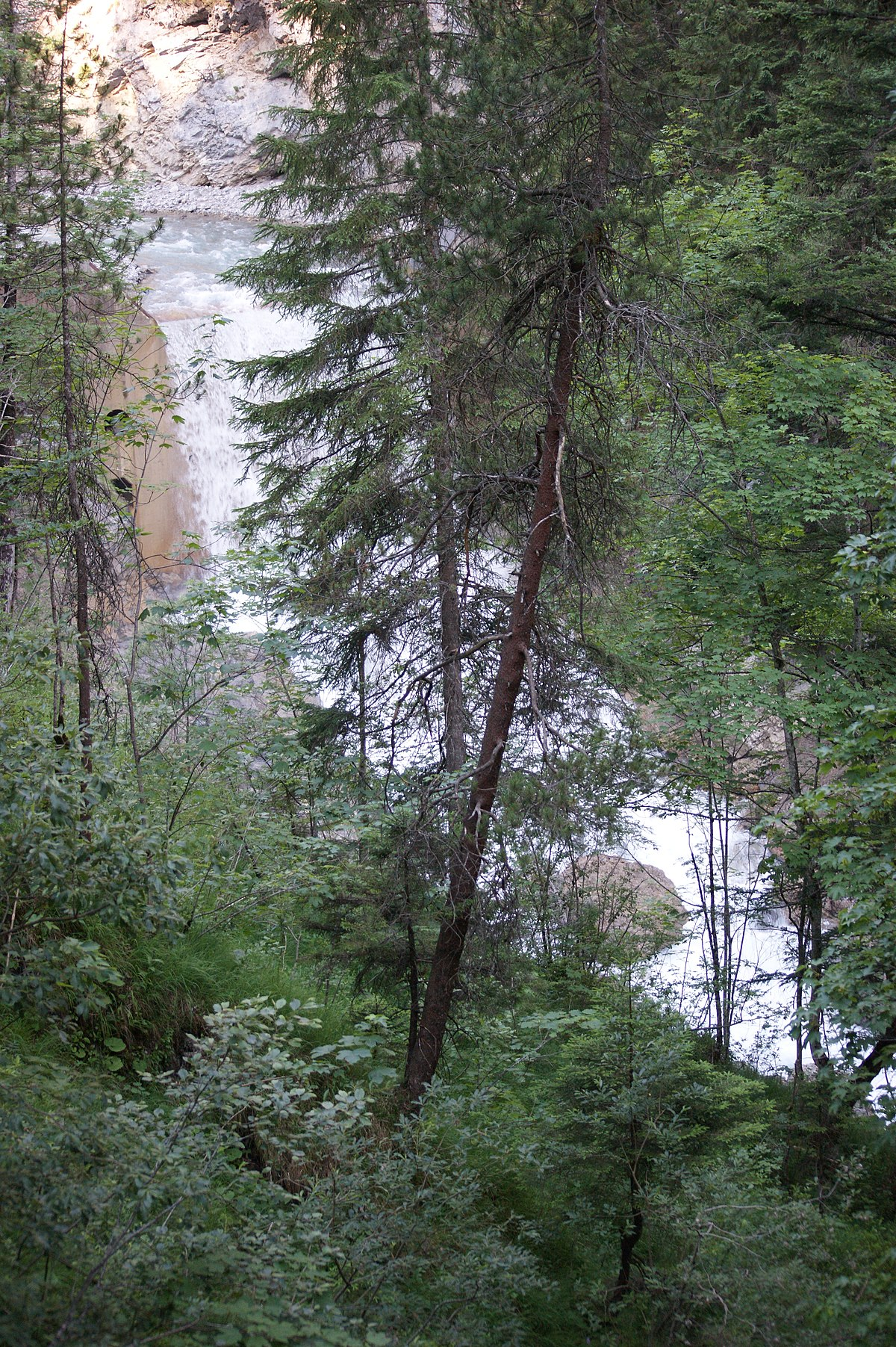 strom in Nenzing - Vermietungen - gnstige Mietangebote