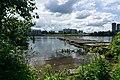 Neva River in Novosaratovka 2018-07-04-1.jpg