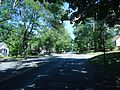 New Providence NJ leafy street on a summer day.jpg
