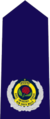 New South Wales State Emergency Service insignia - Assistant Commissioner.png