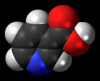 Space-filling model of the niacin molecule, al...
