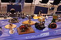 North American Model Engineering Expo 4-19-2008 157 N (2497618123).jpg
