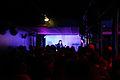 Nova Heart WAVES Vienna 2012 Badeschiff 12.jpg
