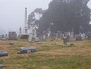 Nutbush Trinity Cem Graves