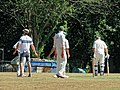 Nuthurst CC v. Henfield CC at Mannings Heath, West Sussex, England 034.jpg