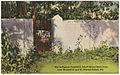 Old duBignon Cemetery, Jekyll Island State Park near Brunswick and St. Simons Island, Ga. (8367061179).jpg