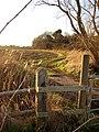 One corner of the Sandy Pightle - geograph.org.uk - 643177.jpg