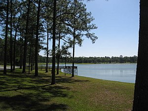 Conecuh National Forest - Open Pond Recreation Area in Conecuh National Forest