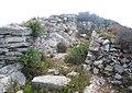 Oppidum de la Cloche - ruines 1.jpg